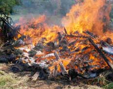 Outdoor Burning Advisory Lane Regional Air Protection Agency Or