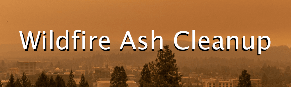 Wildfire Ash Image